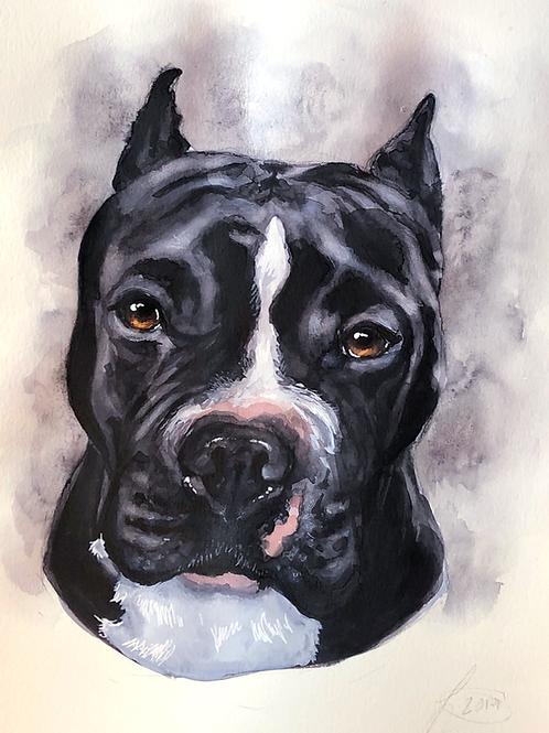 11x14 Custom Pet Portrait