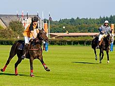 Polo Chantilly