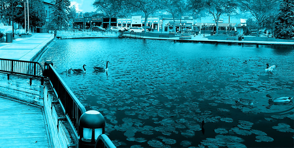 brighton-downtown-winter-blue4.jpg