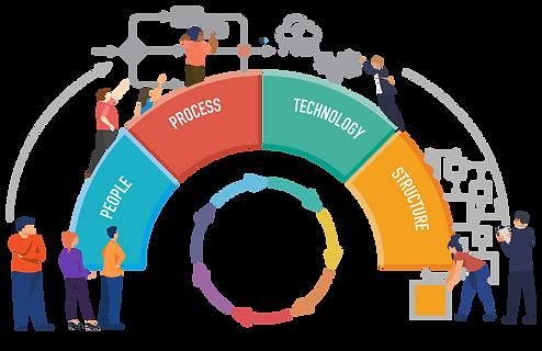 Assess Organizational Design