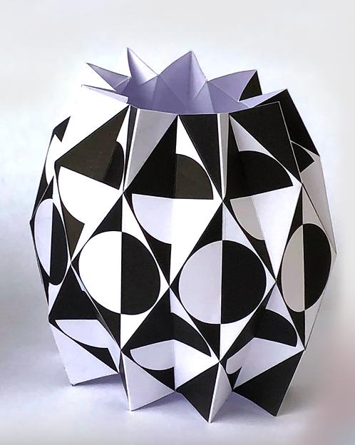 The B/W Vase