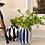 Thumbnail: The B/W Vase