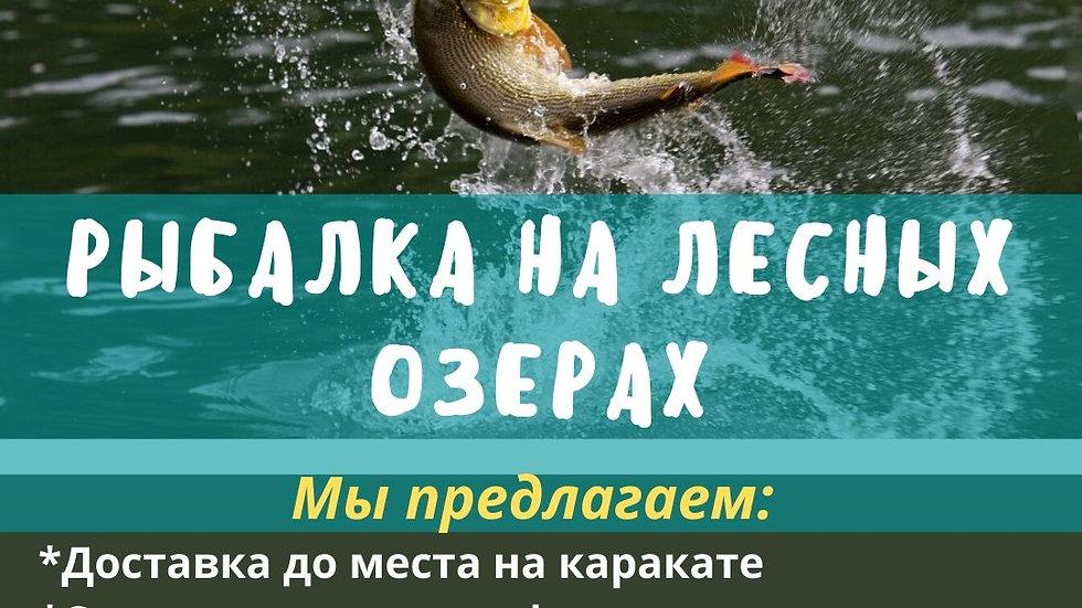 Рыбалка на лесных озерах