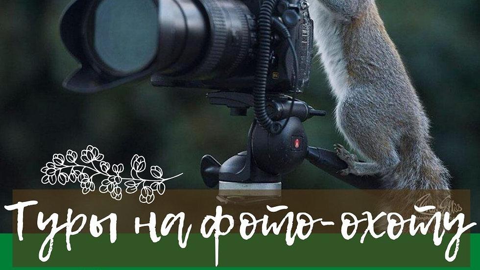 Тур  фото-охота