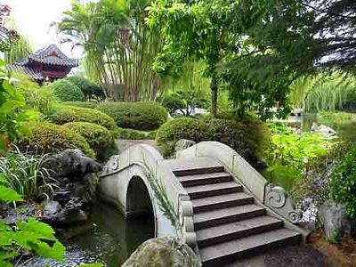 chinese gardens3-1.jpg