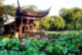 chinese gardens5-1.jpg
