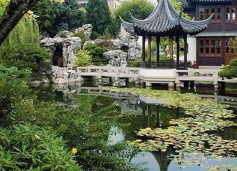 chinese gardens2-1.jpg