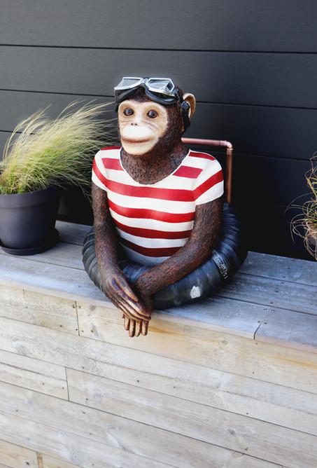 Nestor, le singe