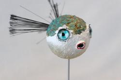 Fugu.6