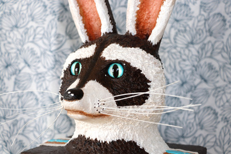 Antonin, le petit lapin-raton