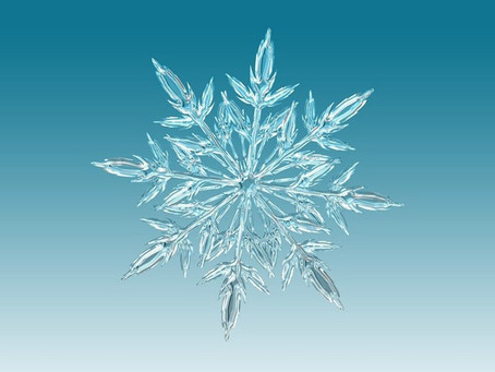 Como os flocos de neve adquirem formas tão belas?
