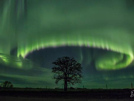 Tempestade solar provoca um verdadeiro espetáculo de aurora boreal; veja as imagens
