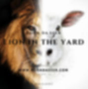 lion in the yard Album cover.jpg