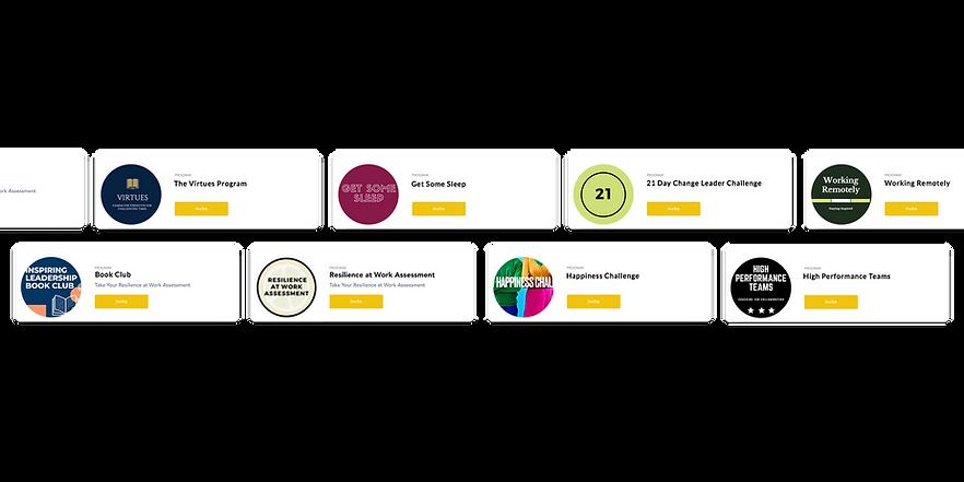Inspiring-Leadership-programs-website.pn