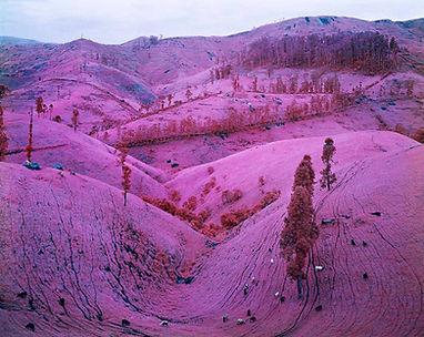Arch2O-Pink-Landscape-08.jpg