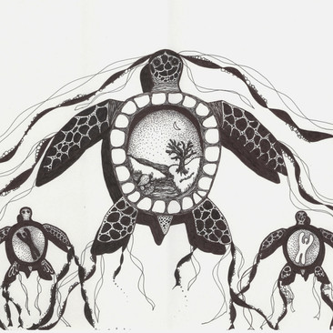 Turtle Run