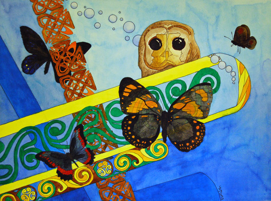 Butterflies and Owl Eyes