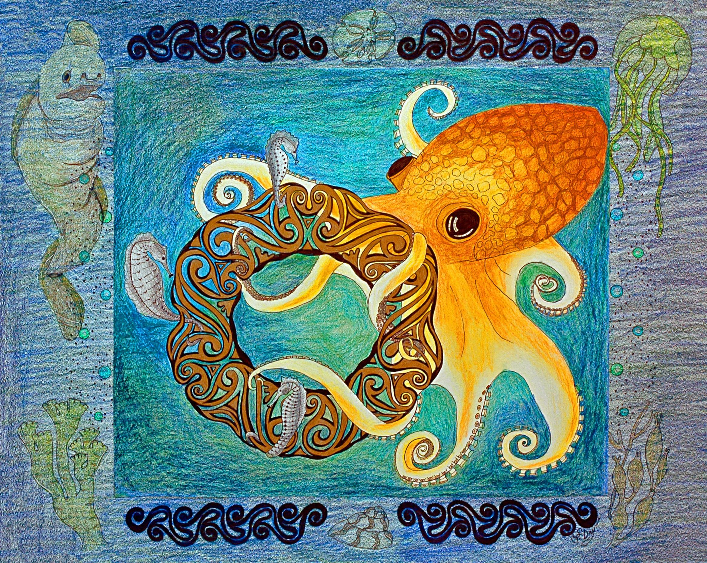 Octopus: Curiosity