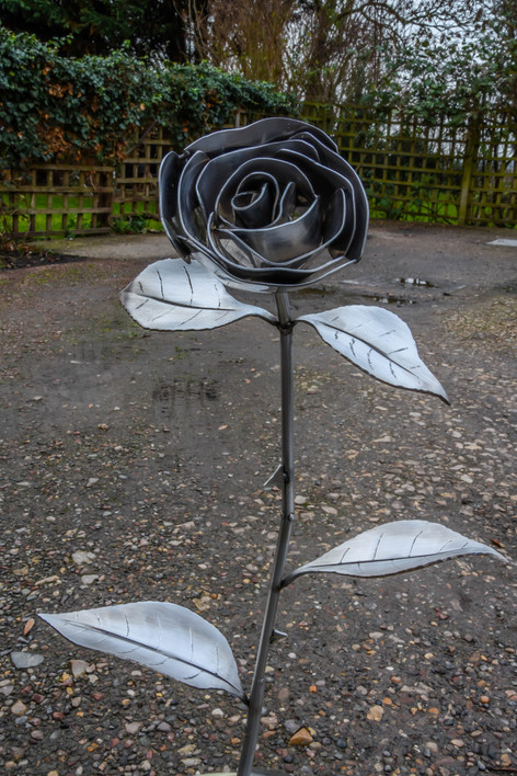Sculptured rose 2.