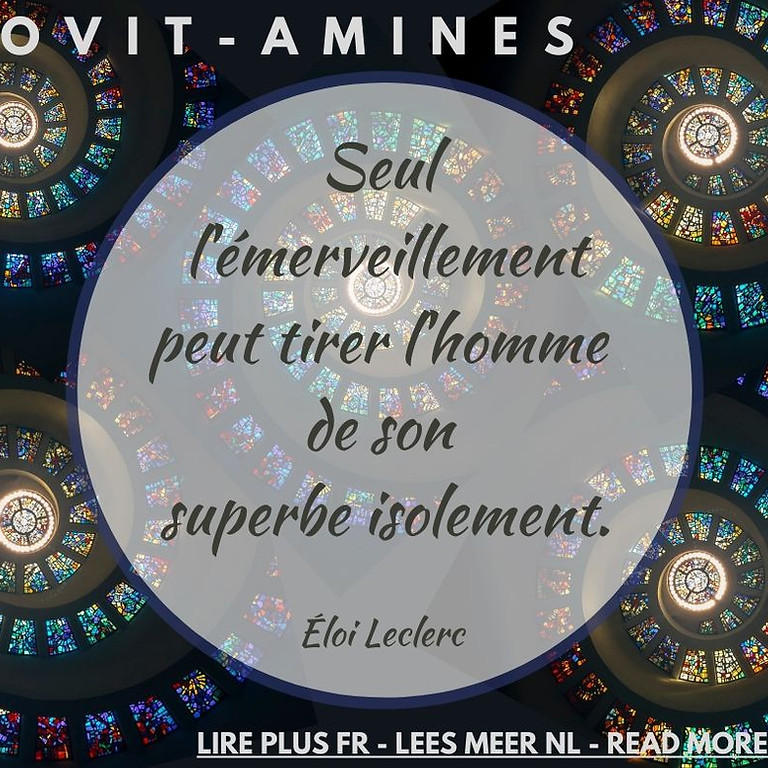 Covit-amines 15 : Éloi Leclerc - FR-NL-ENG