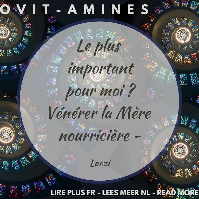 Covit-amines 9 : Laozi - FR-NL-ENG