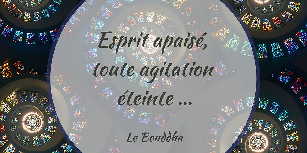 Covit-amines 8 : Le Bouddha - FR-NL-ENG