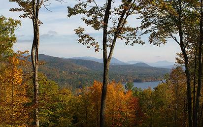 Homesite 7 Fall.jpg