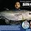 Thumbnail: SILK OCEAN Premium PE line for slow Jigging