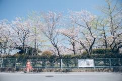 001-andphoto.jpg