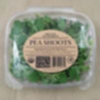 Peashoots Retail Packaging.jpg