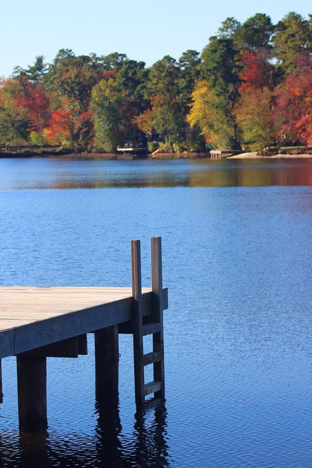 Beach dock autumn picture.jpg