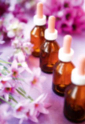 terapia floral 3.jpg