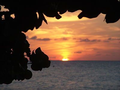 sunset-1029030_1920.jpg