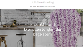 Lilis Cleanconsulting.png