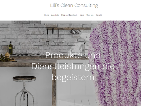 Cleanconsulting.ch ist Online