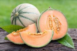 Melon Maison Haas