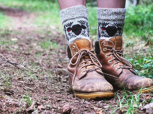 Shepherd Sock Yarn Kit