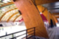 IMGP4254 (2).jpg