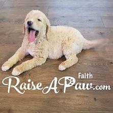 Faith7.jpg