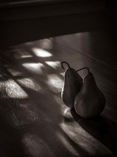Pears, Still life, sepia, South Beach, Coral Avenue, Vero Beach, Florida