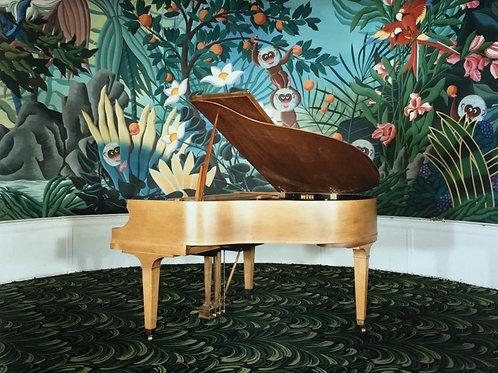 피아노 온천 아칸소 - 데이비드 그레이엄