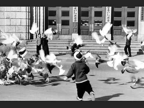 Seoul - Myung Duck Joo