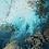 Thumbnail: Clear Waters, Petra Meikle de Vlas