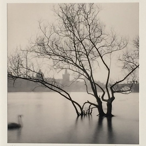 Swan Song, Prague, Czechoscvalcoa, Michael Kenna