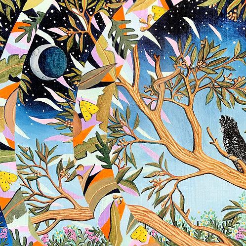 Moth, Moon, Cockatoo, Ingrid Bartkowiak