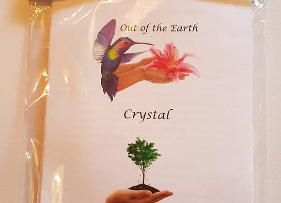Crystal Massage & Tree Meditation Kit with Tree Agate