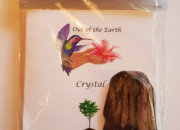 Crystal Massage & Tree Meditation Kit with Petrified Wood