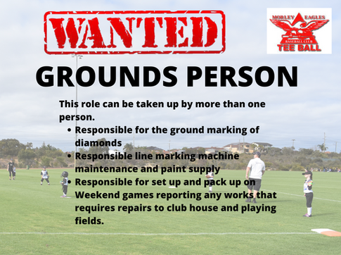 WANTED: GROUNDSPERSON