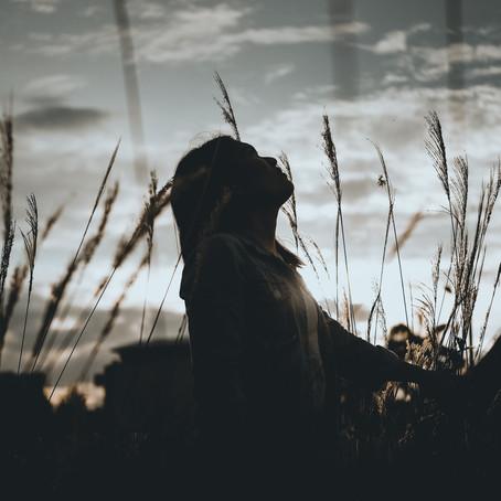 'Skybound' by Niki Baker
