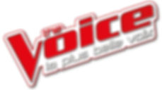 Logo-de-The-Voice_exact1024x768_l.jpg